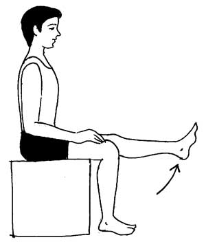 Knee Exercise 8