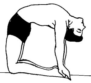 Poses in Sitting Position 6